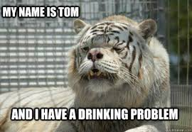 Drunk Cat Meme - drunk cat tom memes quickmeme