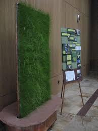 stevie famulari the green artist greening designs portfolio