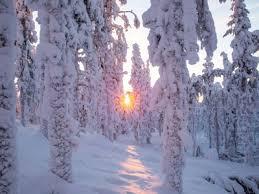 seasons visitfinland