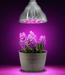 where to buy plant lights where to buy grow lights uk movadobold org