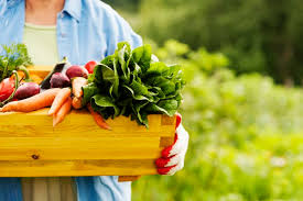 when to plant a vegetable garden in missouri hunker