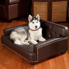 Dog Bed Furniture Sofa by Best Fabric Couches For Dogs Homesfeed