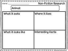 animal report template animal report template fieldstation co