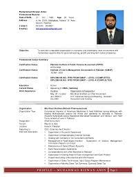 Mac Resume Template 44 Free by Sales Tx Resume