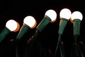 string of 35 8mm pearl white globe bulb lights on green cord