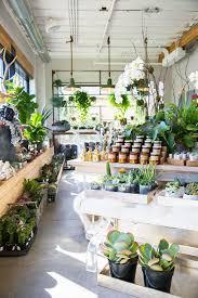 flower shops in 10 best flower shop lighting and design images on