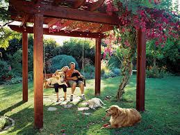 backyard shade ideas for dogs backyard shade ideas for dogs