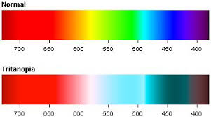 How Many People Are Color Blind Tritanopia U2013 Blue Yellow Color Blindness Colblindor