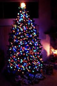 multi colored led christmas lights super led source discount hi tech led light bulbs