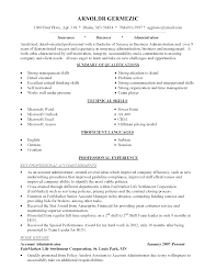 example of job resume