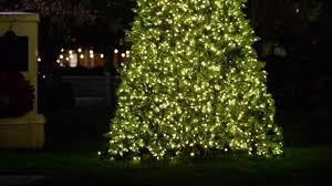 christmas tree lightings and parades start this weekend wral com