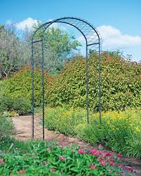 Metal Arbors Perennials Bareroot Plants U0026 Bulbs For Sale Gardeners Com