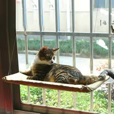 Trixie Cat Hammock by Window Cat Hammock Bed Seanut Sunny Seat Window Hanging Cat Bed