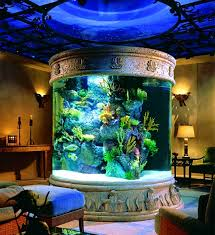 uncategorized cool extraordinary home aquarium ideas for your