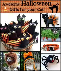 awesome halloween cat gifts with tidy cats