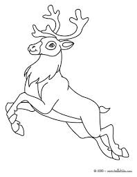 reindeer coloring pages hellokids
