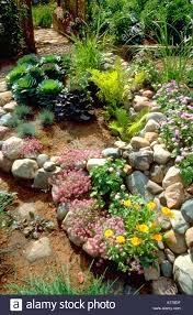 Rock Garden Mn Rock Garden With A Variety Of Green And Flowering Plants Edina