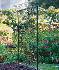 Growing Cucumbers Up A Trellis Modular Trellis Net Kit Home Gardening Supplies At Burpee Com