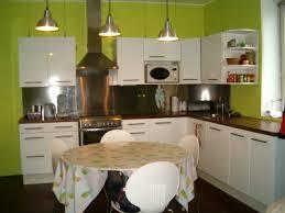 cuisine vert anis modèle deco cuisine vert anis et gris