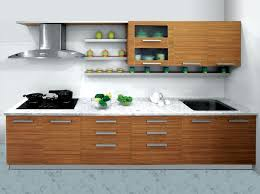 Modular Kitchen Cabinets India 30 Best Kitchen Ideas Images On Pinterest Kitchen Ideas Home