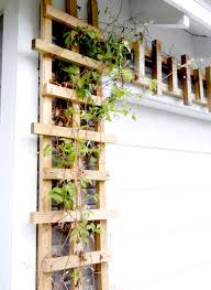 How To Build Trellis Build Your Own Trellis Especially Creative Broad
