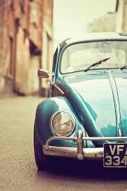 old vw beetle volkswagen beetles and beetles