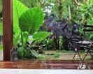 Balinese Garden Ideas | Garden Ideas Picture