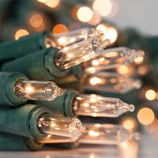 mini lights set of battery operated clear