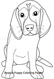 Beagles Coloring Pages With Beagle Puppy Coloring Pages 4050 Free Puppy Color Pages