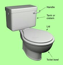 parts of a toilet home design