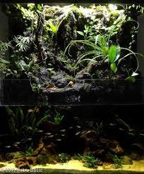 Aquascape Aquarium Designs 60 Best Aquarium Images On Pinterest Aquarium Ideas Planted