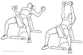 Incline Dumbell Bench Press Incline Bench Dumbbell Fly Illustrated Exercise Guide Workoutlabs