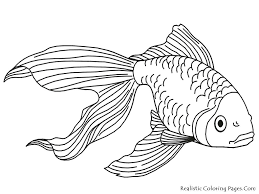 free fish coloring pages easy simple sheet basic page simple fish