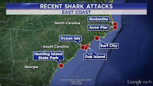 Florida Shark Attack Map Lady Goo Goo Gaga This Is Not My Mother U0027s Motherhood U2026 Page 3