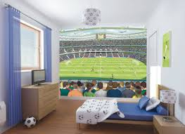 Wall Murals For Sale by Wallpops Walltastic Wall Art Football Crazy 10 U0027 X 96