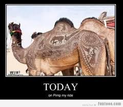 Camel Meme - funny for funny camel captions www funnyton com