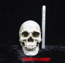 aliexpress com buy small plastic resin halloween skull