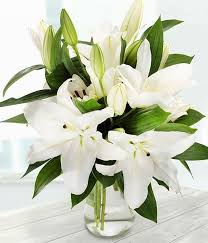 white lillies white lilies vase arrangement the garden