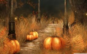 pumpkins halloween hd desktop wallpaper mobile dual monitor
