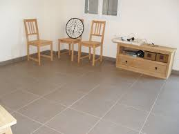 Carrelage Gris Clair 60x60 by Carrelage Couleur Taupe