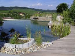 Natural Swimming Pool 38 Best Natural Swimming Pools Images On Pinterest Natural