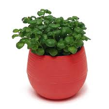 mini round plastic plant flower pots home garden office desk decor