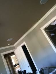 sherwin williams pussywillow design ideas pictures remodel and