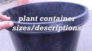 25 gallon planter u2013 home image ideas