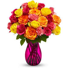 multicolored roses two dozen multicolored roses dubai flower shop flower delivery