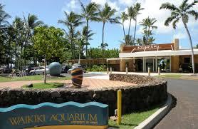 waikiki aquarium honolulu visit all the world