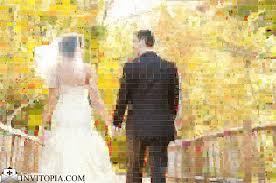 invitopia the complete guide to wedding invitations