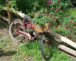Zone Gardening - grandiflora gardening public find a retail find a