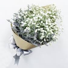 Baby Breath Flowers Hand Bouquet Baby Breaths Sg Flower Delivery Smilefloral
