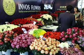 Flower Companies Colombian Flowers From Invos Flowers